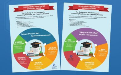 The Challenge of AP Coursework 2020